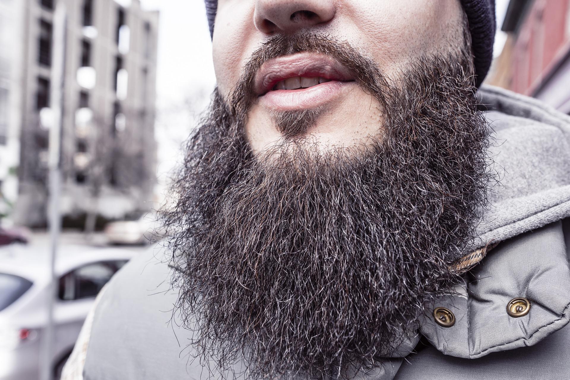 greffe de barbe