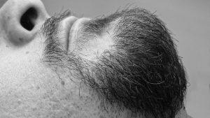 barbe greffe